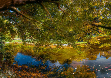 Autumn in Love by Andrea Capraro