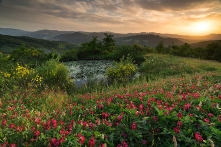 Late Spring by Giovanni Maurizi