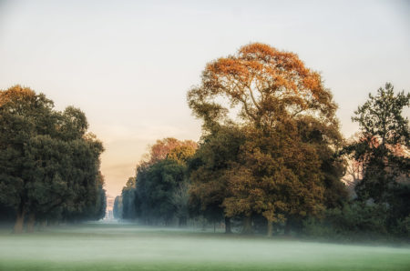 Kew Mist by Andrew Wade