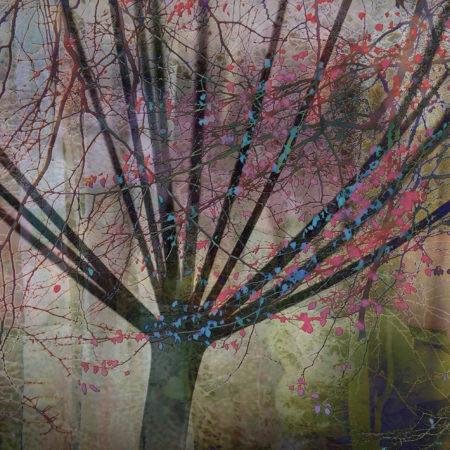 Seedhead Tree by Linda Duncalf