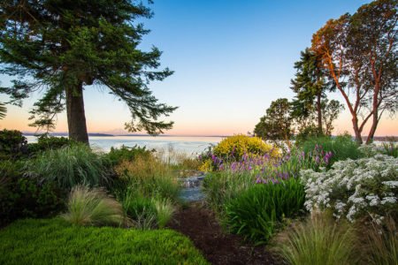 Windcliff, Dan Hinkley's Home Garden by Claire Takacs