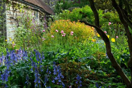 The Barn Garden by Carol Casselden