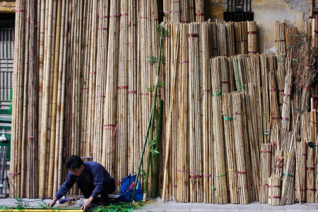 Bamboo Seller by David Every