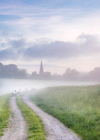 Morning Mist by Jude Gadd