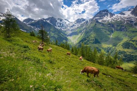 Alpine Idyll by Zsolt Varanka