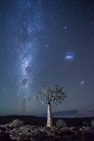 The Quiver amongst the Galaxies by Katherine McInroy