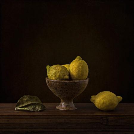 Study of Lemons by Inna Karpova