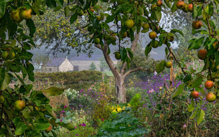 Morning Mist and Mellow Fruitfulness by Nigel McCall