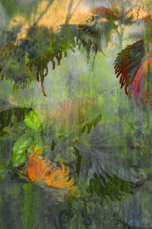 Waterlily House Window II by Jocelyn Horsfall