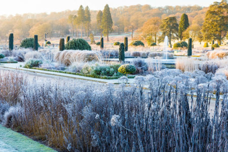 Trentham Gardens by Joe Wainwright