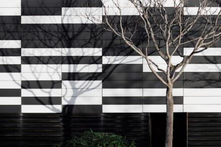 Urban Trees III by J. Ramon Moreno