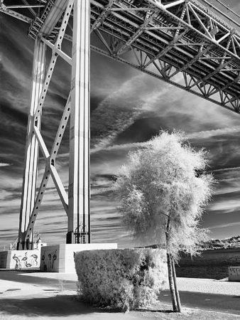 Under the Bridge by Dina Vieira