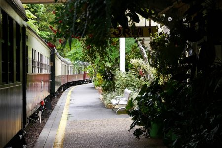 The Green Railway by Vicki Anderson