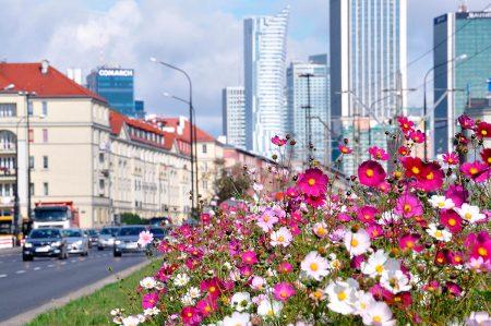 Varsovienne in Warsaw by Ewa Gryguc