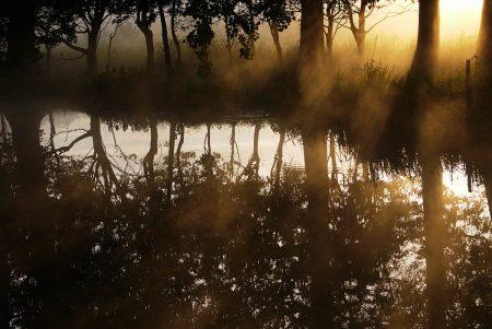 Reflect by Joanne Barlow