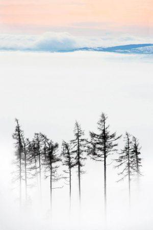 Lost in Clouds by Vanda Ralevska