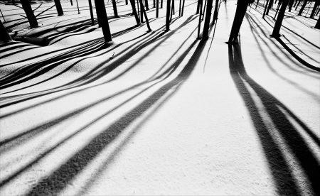 Tangle Creek by Ron Tear