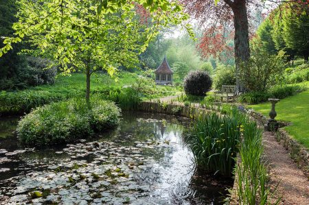 Pond at the Old Rectory, Netherbury by Carole Drake