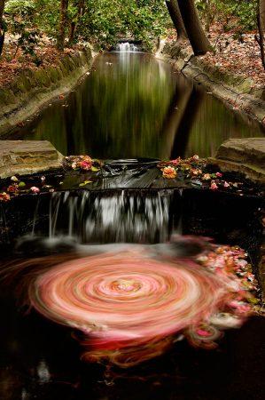 Lolly Falls by Greg Tucker