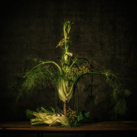The Fennel by Monique van Velzen