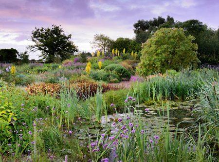 Summer Morning at Holt Farm by Carole Drake