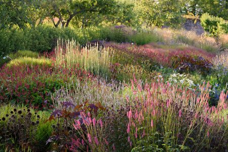 Summer Tapestry by Carole Drake