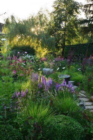 Light in the Garden by Lilianna Sokolowska