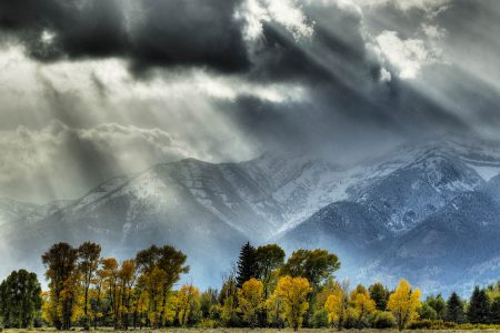 North American Wilderness by Bill Coster