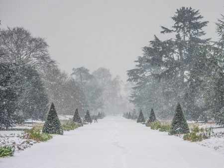 Snowing on the Great Broad Walk by Dick Hawkes