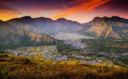 Colourful Fields by Suwandi Chandra