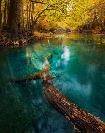 Autumn's Emerald by Paul Marcellini