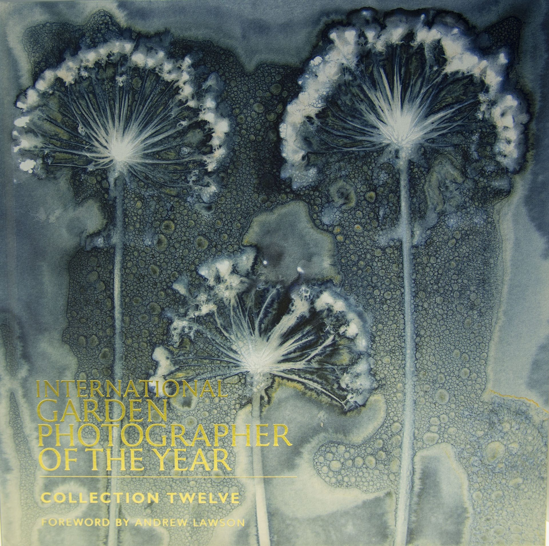 International Garden Photographer of the Year - Book 12