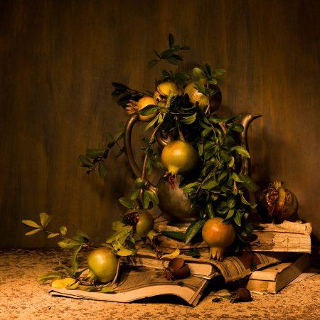 Pomegranate by Fiorella Gaggero