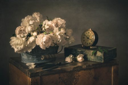 Still Life with White Roses by Iwona Czubek