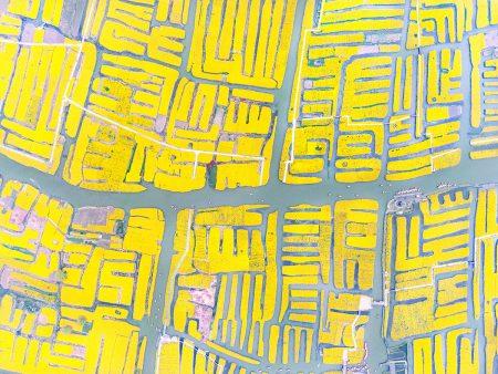 Flower Fields and Water Lanes by Ming Li