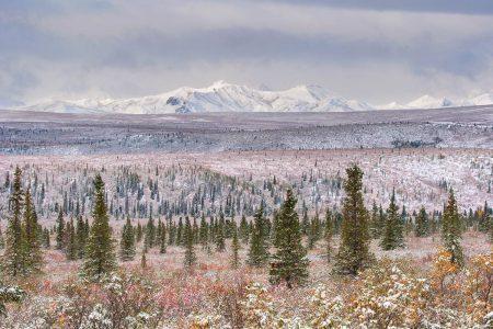 Alaska Range by Alessandro Carboni