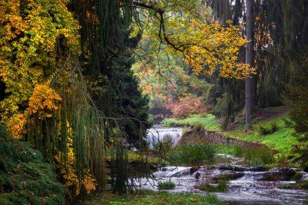 Golden Influence of Autumn by Evgeniya Vlasova