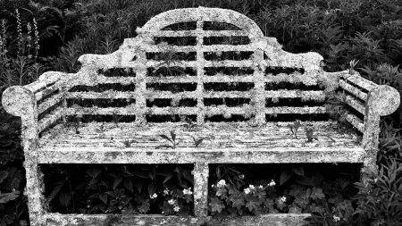 Lutyen's Bench by Royston Curtis