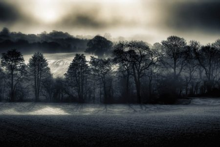 Black and White Field by Kyle Parr