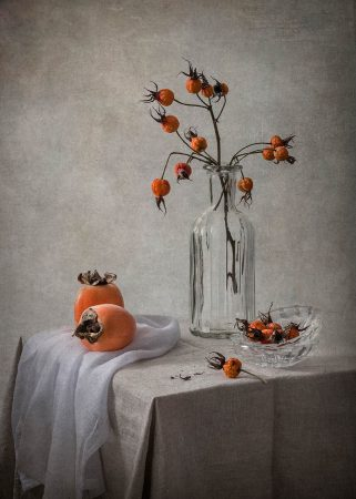 Rosehips and Persimmons by Inna Karpova