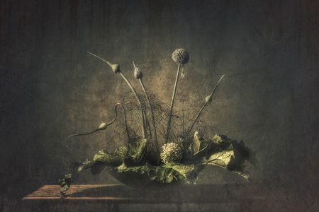 Still Life Vegetable by Monique van Velzen