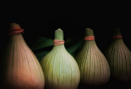 Row of Onions by Rory McDonald