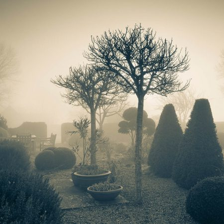 Misty Morning at The Parish House by Carole Drake