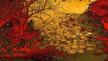 The Waterlilies by Fan Yi