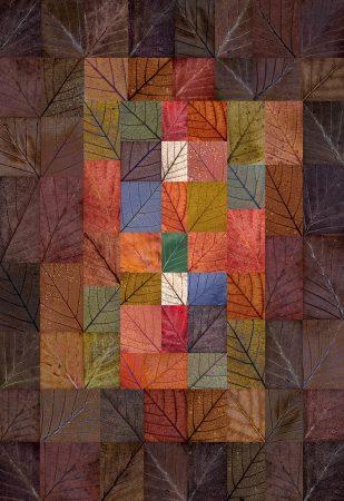 Autumn Harmony by Tony North