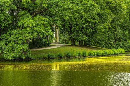 Fresh Green by Henry Eicken