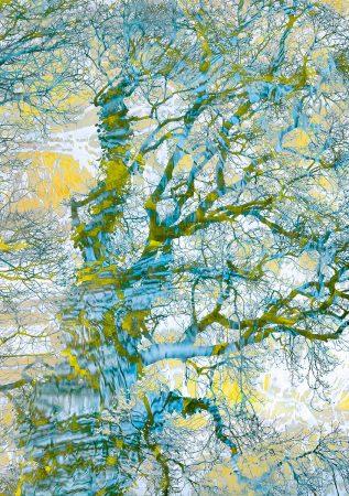 Winter's Witness by Jane Simmonds