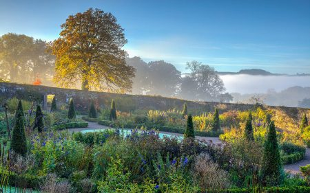 Indian Summer Morning by Nigel McCall