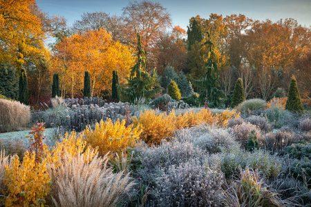 Frosty Autumn Glory by Richard Bloom