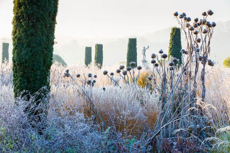 Frost in the Italian Garden by Joe Wainwright